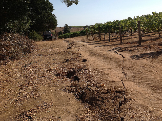Photo Courtesy U.S. Geological Survey South Napa Quake